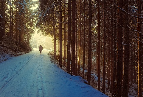 En person går på en snöig skogsväg